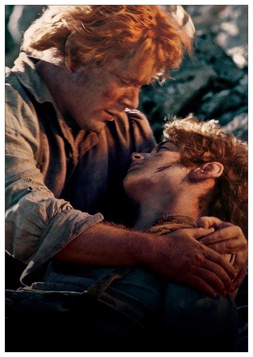 Портретный постер Lord of the Rings / Властелин Колец